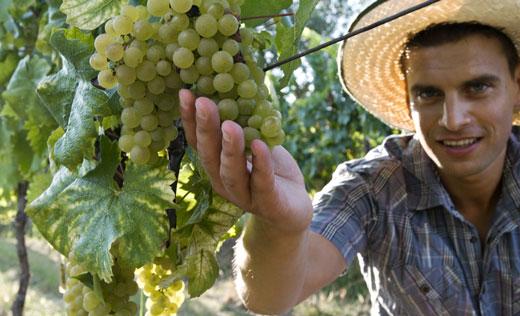 agricoltore-giovane-52012