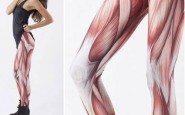 500x437xwtf-leggings-muscle.jpg.pagespeed.ic.Oxqx1H57Ra