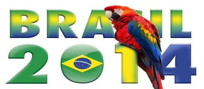 Brasile-Olanda 0-3, finale 3 e 4 posto Brasile 2014