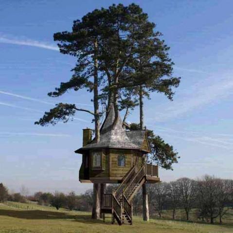 Resiste ancora il mito della casa sull 39 albero for Planimetrie della casa sull albero