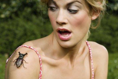 fobia_insetti_N