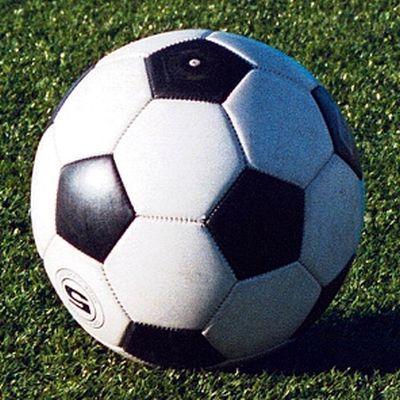 Presentato il nuovo pallone unico della lega pro