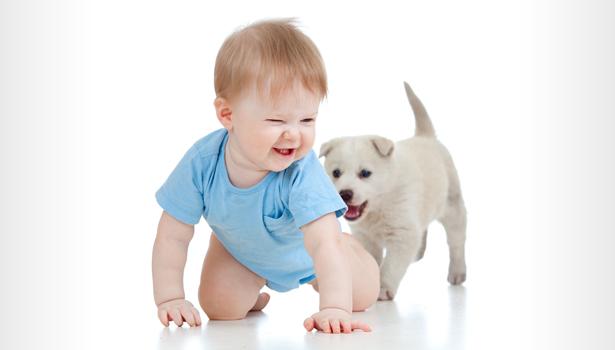 Neonati, pelo degli animali tiene lontana asma