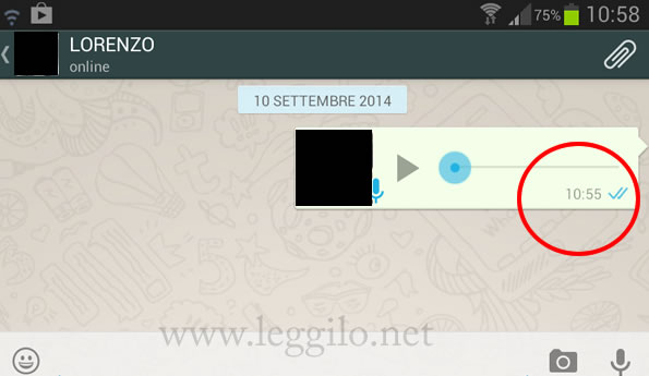 spunte-blu-whatsapp