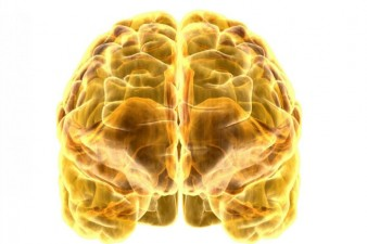 telepatia-comunicazione-tra-cervelli-638x425
