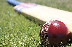 824 GM Cricket