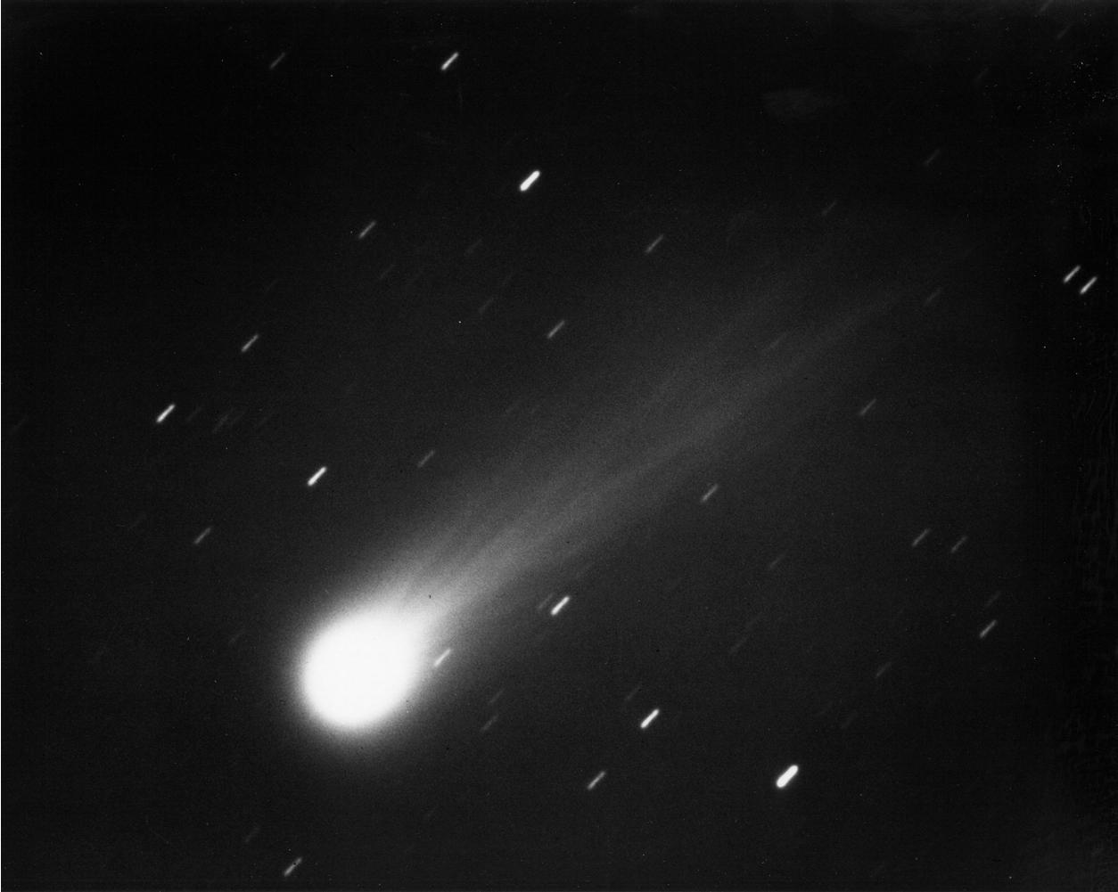 Cometa Halley astronomia