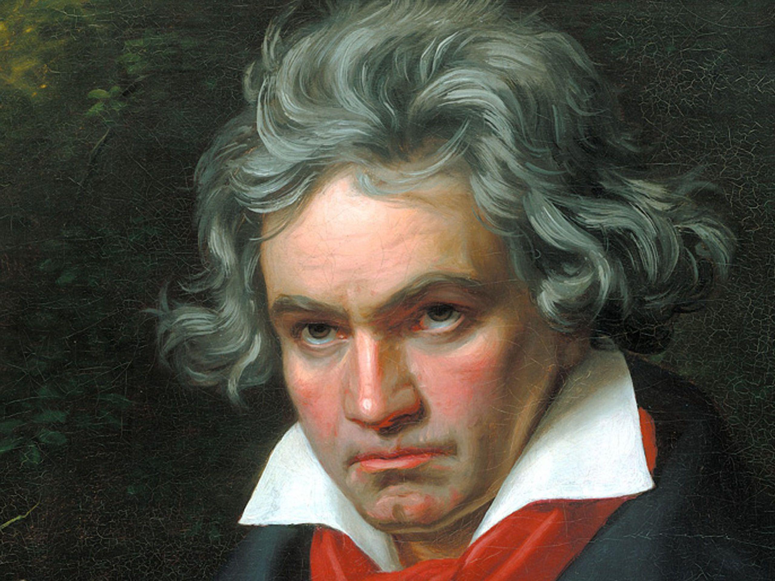 Ludwig van Beethoven 8