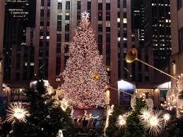 albero-new york