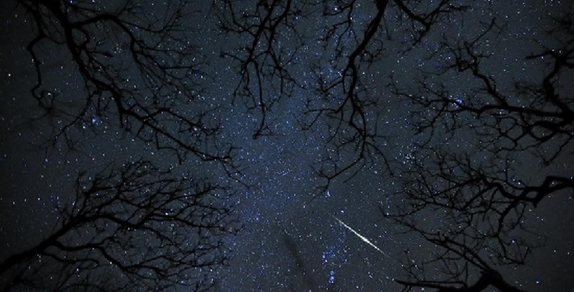 geminidi meteore osservare asteroide
