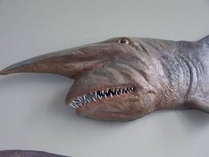 13.1238248080.a-goblin-shark-xat-least-a-papier-mache-onex