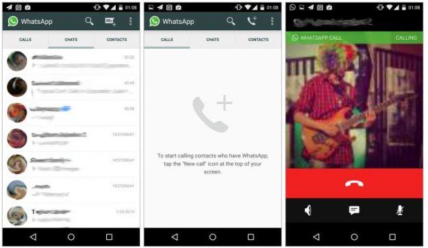 Chiamate Whatsapp data