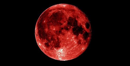 luna-ross