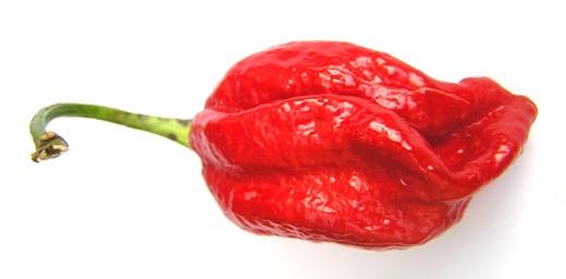 Classifica 5 peperoncini più piccanti al mondo
