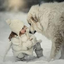 Lo sguardo tra uomo e cane rafforza il legame novità