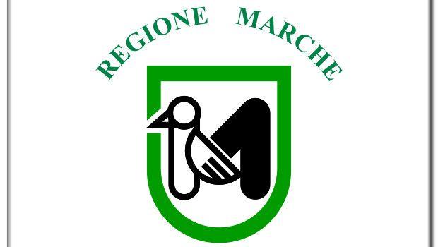 Marche 2015 candidati elezioni regionali
