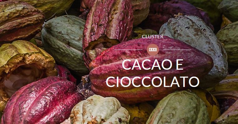 cacao expo 2015