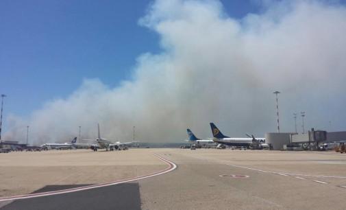 Nuovo incendio a Fiumicino, forse doloso