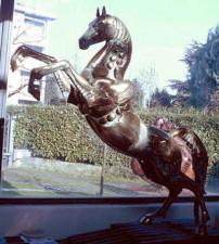 Cavallod orgoglio2