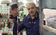 Centocelle furto alla profumeria Puliani