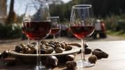 movimento turismo vino Campania