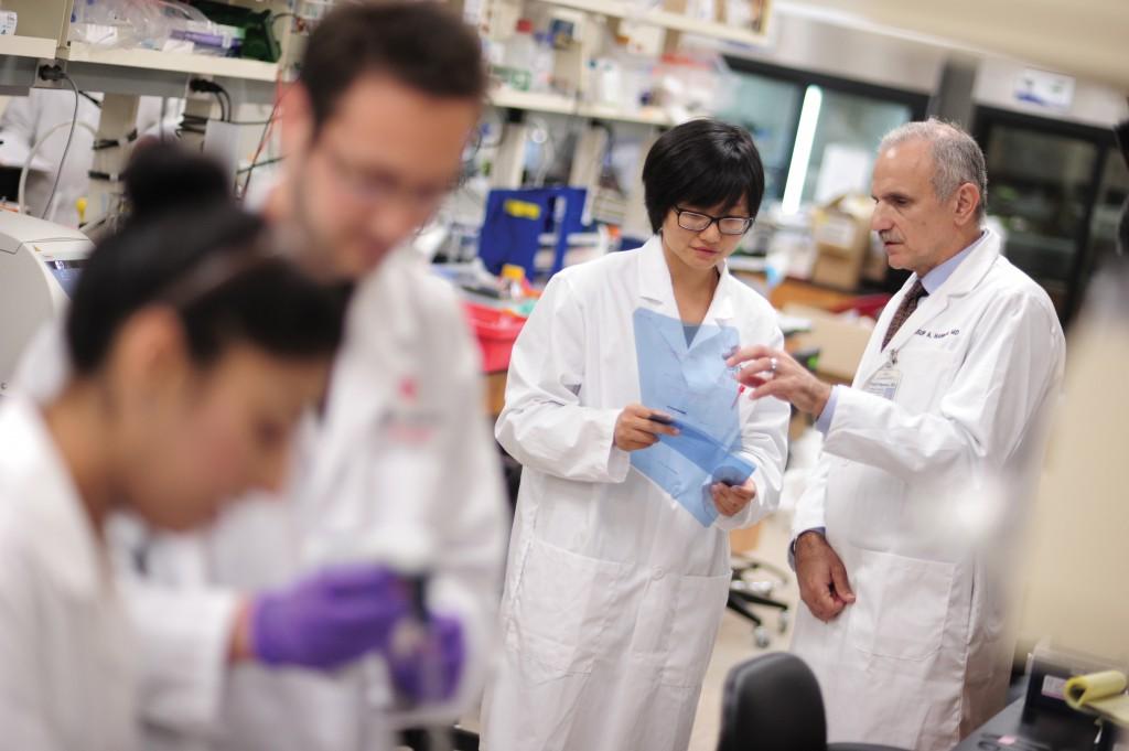 Tumori, realizzato un biochip che riconosce e rimuove le cellule malate