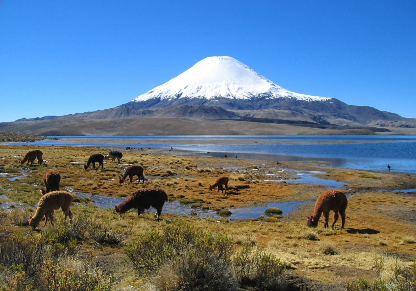 Forte scossa di terremoto magnitudo 6.3 nel Cile centrosettentrionale