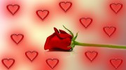 San Valentino una coppia su tre vuole più amore e meno sesso