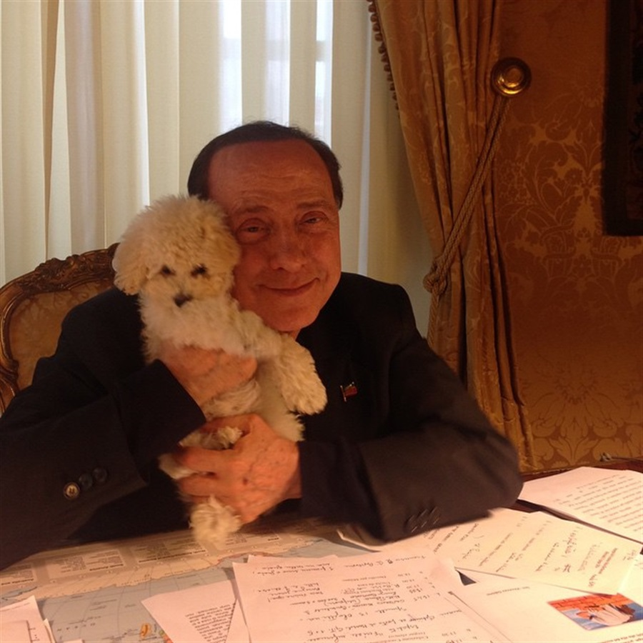 """Silvio Berlusconi diventa vegetariano: """"Basta far soffrire gli animali"""""""