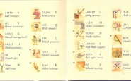 Storia e Origini della Scrittura Fenicia