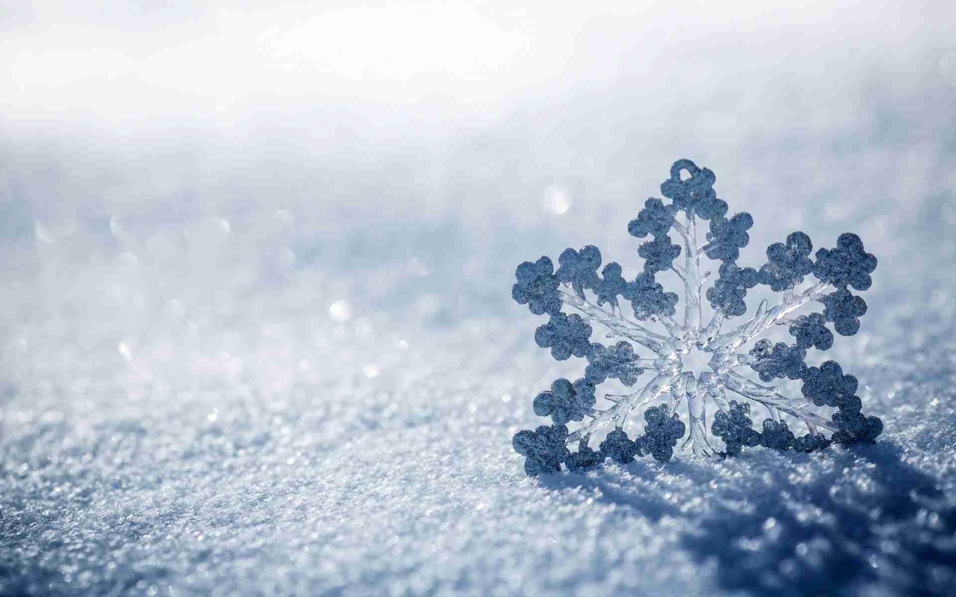 5 consigli per realizzare foto bellissime sotto la neve