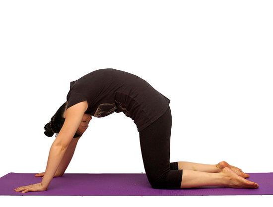 Come fare stretching per la schiena