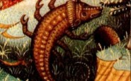 Come comprendere una donna dello Scorpione