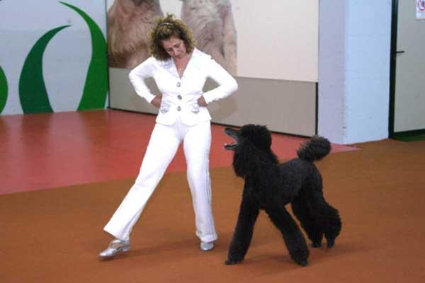 Che cos'è Dog Dance