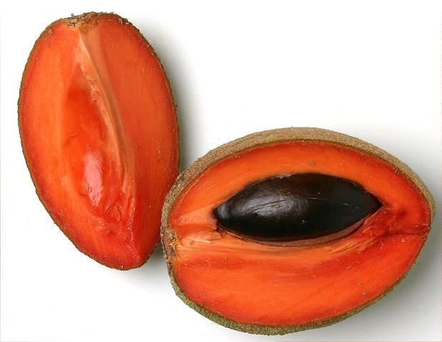 Il Mamey Sapote, raro frutto tropicale