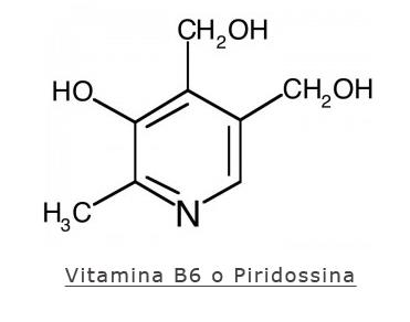 A cosa serve la vitamina B6