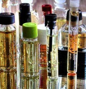 Come estrarre l'olio dal rosmarino