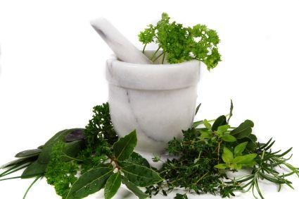 Come disintossicare il corpo con le erbe
