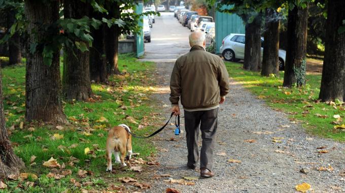 Quante volte il proprio cane sente la necessità di uscire