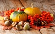 Cibi che rinforzano sistema immunitario in autunno