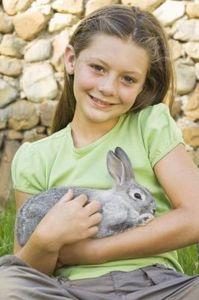 Come crescere un coniglietto orfano