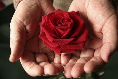 Perchè alle donne piace ricevere fiori
