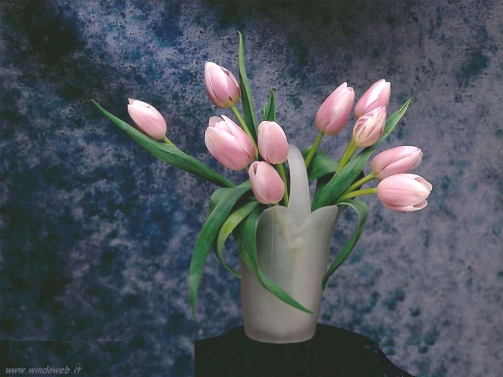 Come prolungare la vita dei fiori tagliati