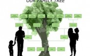 Come creare un albero genealogico grazie a Word