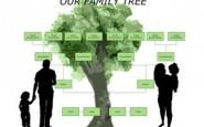 Come creare un albero genealogico grazie a Word