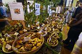 Cinque antipasti autunnali con i funghi