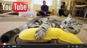 Come togliere un video da youtube