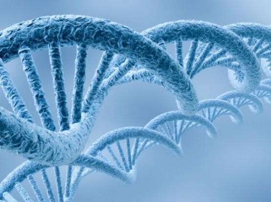Le malattie genetiche non curabili