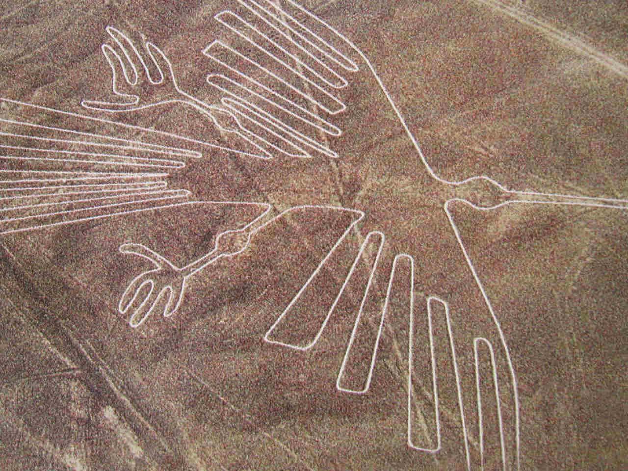 Mistero: Le linee Nazca (Perù), messaggi per gli alieni?