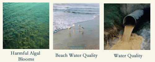 Come ridurre i consumi d' acqua